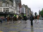 police horses on Princes Street
