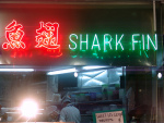 Shark Fin Soup Is Increasing in Popularity in Asia and Beyond