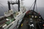 Steve Irwin collides with whaling spotter ship. Photo: Eric Cheng/Sea Shepherd