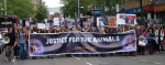 World Day for Animals in Laboratories 2014, Nottingham